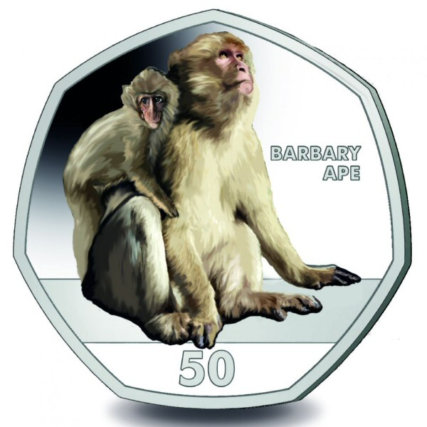 2018 Primates - The Barbary Ape (Colour)