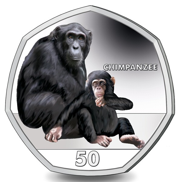 2018 Primates - The Chimpanzee (Colour)